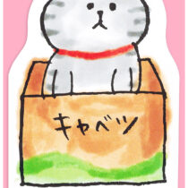 MW-CATMEMO-PINK