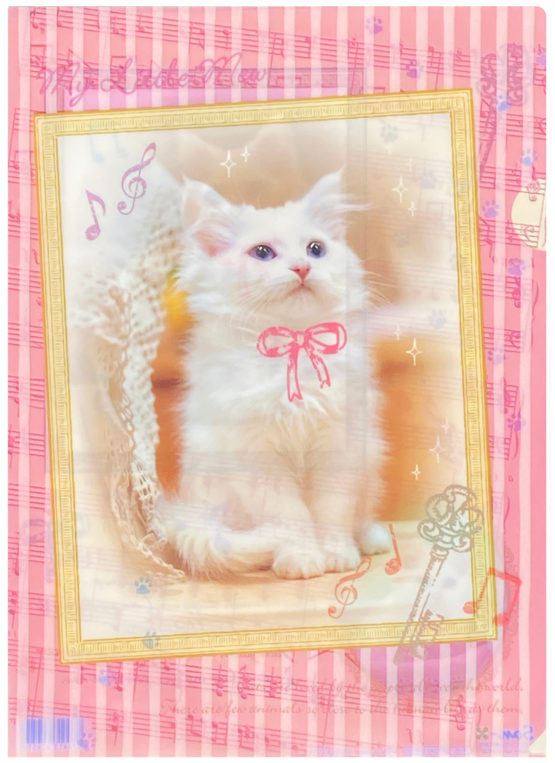 San-x My Little Mew Kitten Plastic File Folder